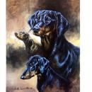 Sally Mitchell Fine Art Dog Prints - The Doberman