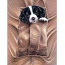 Sally Mitchell Fine Art Dog Prints - Sound