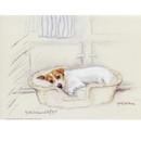 Corinium Fine Art Dog Prints - Terrier in a Basket