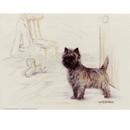 Print Cairn Terrier, Gill Evans 12 3/4 x 10 3/4