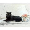 Corinium Fine Art Cat Prints - Black Cat on Window Sill