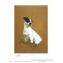 Sally Mitchell Fine Art Dog Prints - Thoughtful