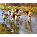 Sally Mitchell Fine Art Dog Prints - Fred Haycock Horse Prints -