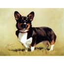Dogs - Proud Corgi - 6 Pack