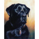 Dogs - A Stalwart Fellow (Labrador Retriever) - 6 Pack
