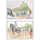 Haddington Green Equestrian Art Jude Too Greeting Cards - Learn Your Test - 6 pack