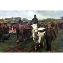 Sally Mitchell Fine Art Horse Prints - The White Slave (Draft Ho