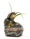 IWGAC 0150-821 Pottery Turtle Bienvenidos