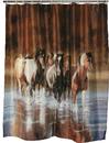 IWGAC 017-768 Running Horses