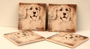 IWGAC 0183-36471 Golden Lab Coasters Set of 4