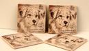 IWGAC 0183-36499 Australian Shepherd Coaster Set of 4
