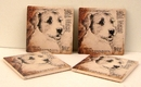 IWGAC 0183-36514 Jack Russell Terrier Coasters Set of 4
