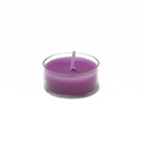 Jeco CTZ-016 Purple Tealight Candles (50pcs/Pack)
