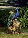Jeco FCL170 Peacock Fountain