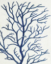 Jeco HD-WD027 16 X 20 Blue Dried Tree Oil Paint Wall Decor