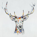 Jeco HD-WD042 32 X 32 Color Deer Collection Iii Oil Painting Wall Decor