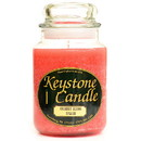 Keystone Candle J26-CMS 26 oz Coconut Mango Splash Jar Candles