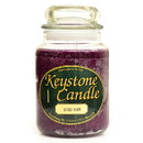 Keystone Candle J26-SpPlum 26 oz Spiced Plum Jar Candles