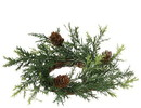 Keystone Candle Sul-cp513 Prickly Pine Candle Rings 2 Inch