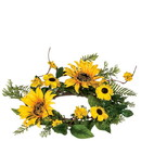 Keystone Candle Sul-sfw4 Sunflower 4.5 Inch Candle Ring