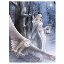 Starlinks WP104AS Midnight Messenger Canvas Art Print by Anne Stokes