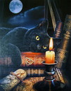 Starlinks WP224LP Witching Hour Canvas Art Print by Lisa Parker