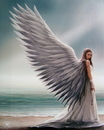 Starlinks WP755AS Spirit Guide Canvas Art Print by Anne Stokes