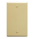 ICC ICC-IC630EB0IV Flush Wall Plate Blank IVORY