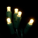 Winterland BAT-50MMWW-4G - 5MM Chonical Battery Operated LED Warm White 50 count lights set on Green Wire