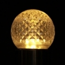Winterland G40-RETRO-WW-W G40 Non-Dimmable Warm White Commercial Faceted Retrofit Bulb With An E26 Base And 10 Internal LED Chips