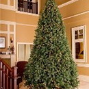 Winterland WL-TRSQ-12 12' Classic Sequoia Tree With Metal Stand