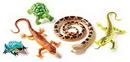 Learning Resources LER0838 Jumbo Reptiles & Amphibians