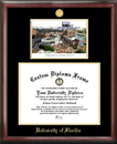 Campus Images FL994LGED University of Florida Gold embossed diploma frame with Campus Images lithograph