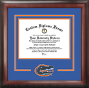 Campus Images FL994SD University of Florida Spirit Diploma Frame