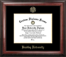 Campus Images IL999GED Bradley University Gold Embossed Diploma Frame