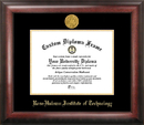 Campus Images IN994GED Rose Hulman Institute of Technology Gold Embossed Diploma Frame