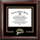 Campus Images MI981SD Western Michigan University Spirit Diploma Frame