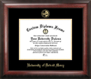 Campus Images MI985GED University Of Detroit - Mercy Gold Embossed Diploma Frame