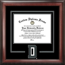 Campus Images NH999SD Dartmouth College Spirit Diploma Frame