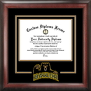 Campus Images TX955SD Baylor University Spirit Diploma Frame