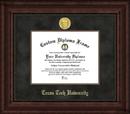 Campus Images TX960EXM Texas Tech Executive Diploma Frame