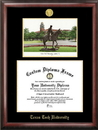 Campus Images TX960LGED Texas Tech University Gold embossed diploma frame with Campus Images lithograph
