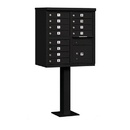Salsbury Industries 3312BLK-P Cluster Box Unit (Includes Pedestal and Master Commercial Locks) - 12 A Size Doors - Type II - Black - Private Access