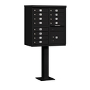 Salsbury Industries 3312BLK-U Cluster Box Unit (Includes Pedestal) - 12 A Size Doors - Type II - Black - USPS Access