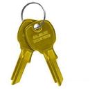 Salsbury Industries 3599 Key Blanks - for Standard Locks of Vertical Mailboxes - Box of (50)