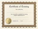 Masterpiece Studios 930300 Training Stock Certificate