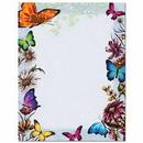 The Image Shop OLH552-25 Butterflies Letterhead, 25 pack