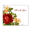 Rose Corner Thank You Card, Blank Parchment Post Card, 65lb Cover