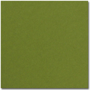 Pop-Tone Jellybean Green Letterhead - 25 Sheets/Pack