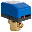 Erie Controls VM2222P33A000 24V 1/2